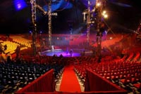 Circus Organisaties