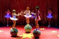 jeugd Circus