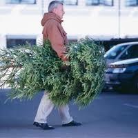Online kerstboom bestellen